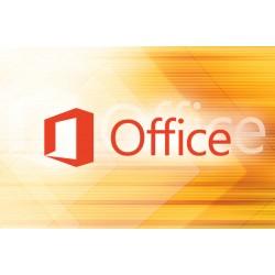 1 x MS Office 2019 Professional PLUS dla Biblioteki, Muzeum, Domu Kultury, SOSW i Edukacji 2022